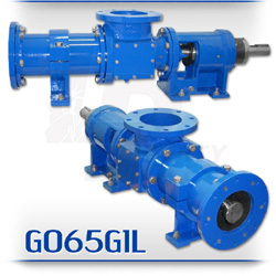 G065G1L Series Heavy Duty Waste Activated Sludge Progressive Cavity Pump