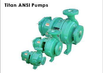 Titan ANSI 4196 Pumps